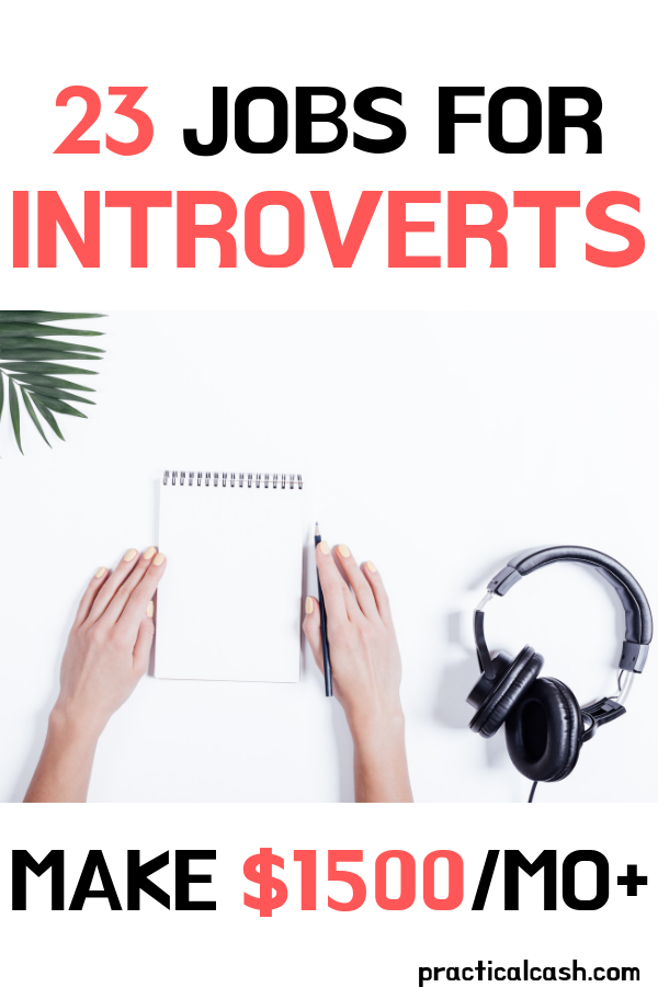 23 Income Ideas for Introverts